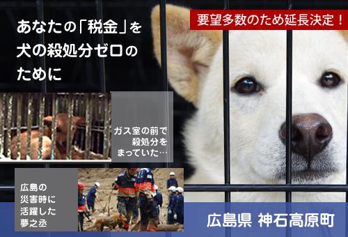 あなたの「税金」を犬の殺処分ゼロのために