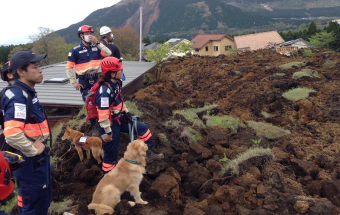 災害救助の様子